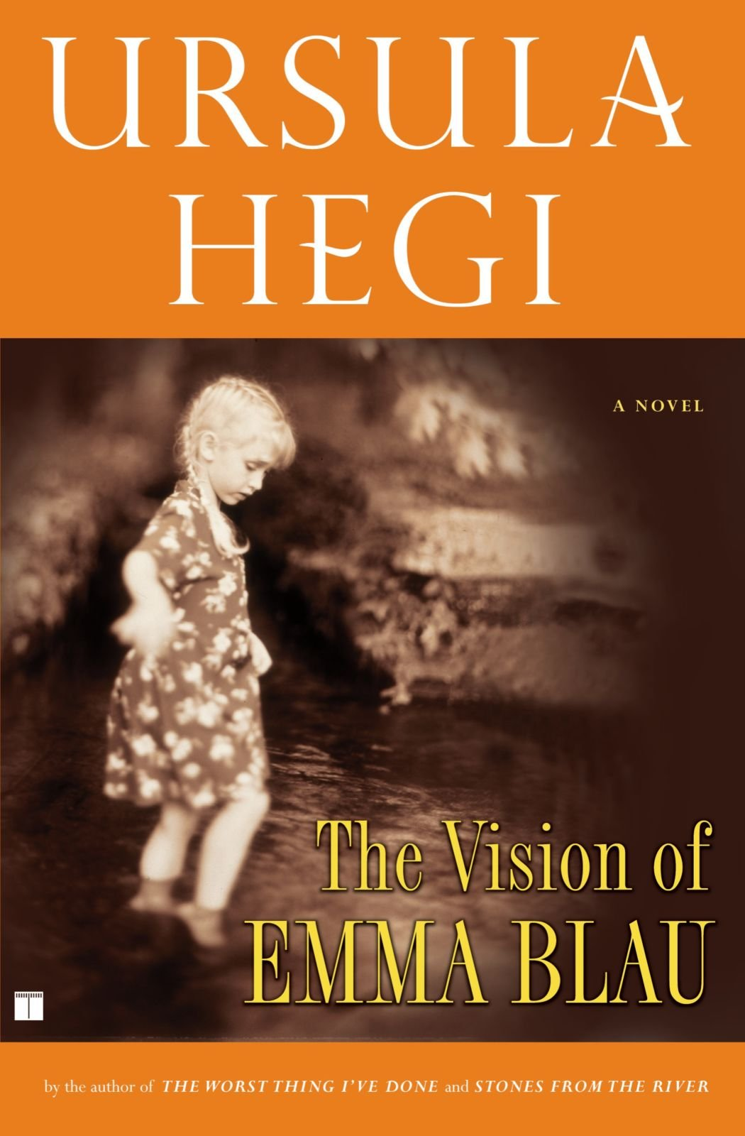 The Vision Of Emma Blau Ursula Hegi 9780684872735 Amazon Com Books