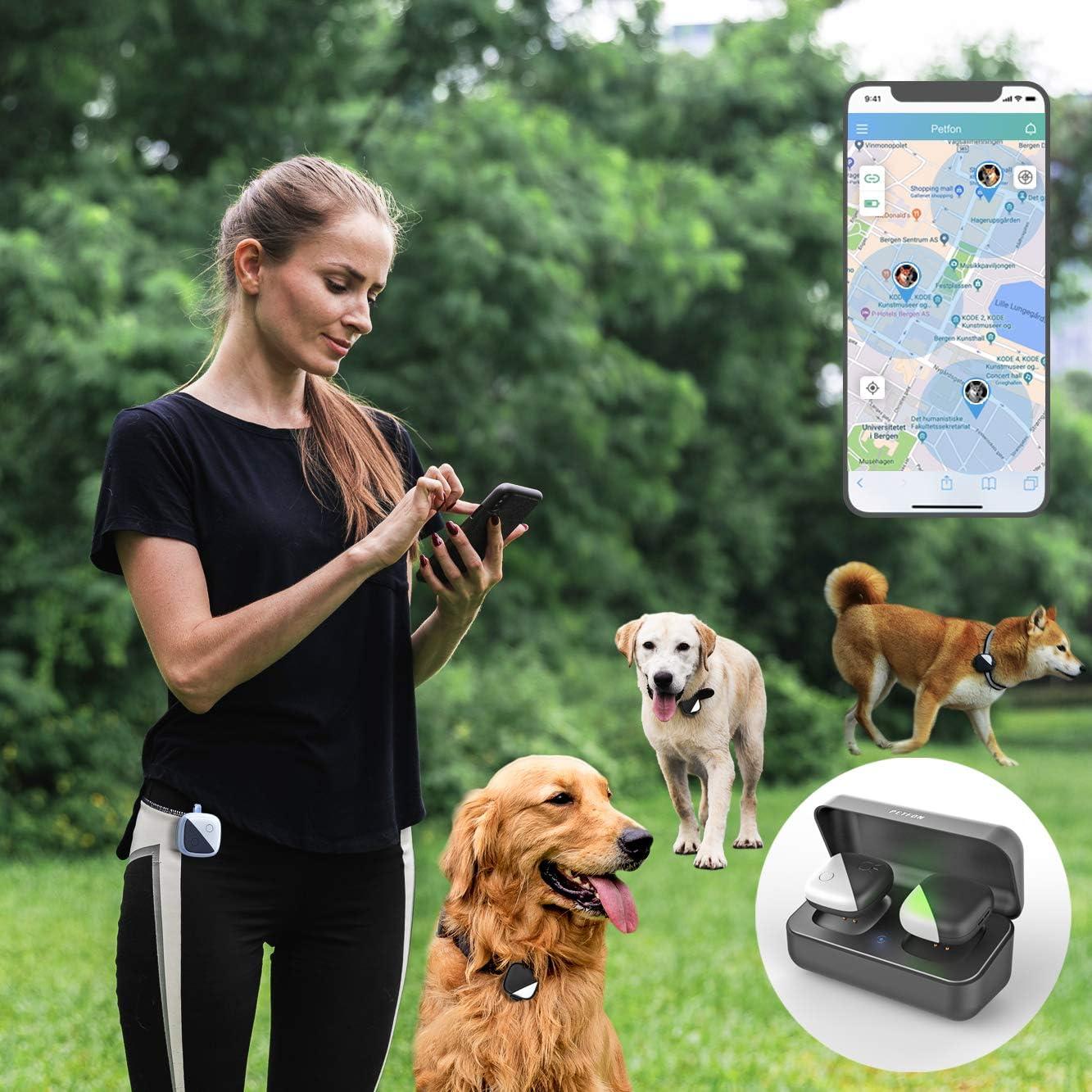 Pet Gps Tracker Dog Locator Bell-real-time Activity Control Wasserdichte F/ür Hund Katze Kuh Schaf Schwarz Pet Supplies