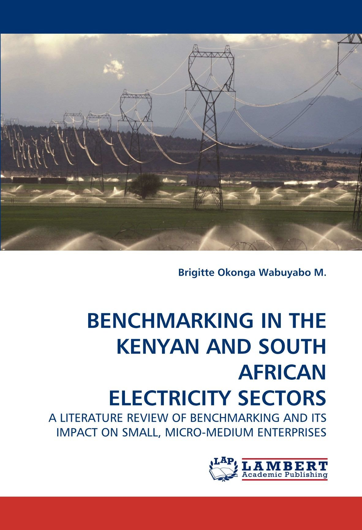 BENCHMARKING IN THE KENYAN AND SOUTH AFRICAN ELECTRICITY SECTORS: A LITERATURE REVIEW OF BENCHMARKING AND ITS IMPACT ON SMALL, MICRO-MEDIUM ENTERPRISES ebook