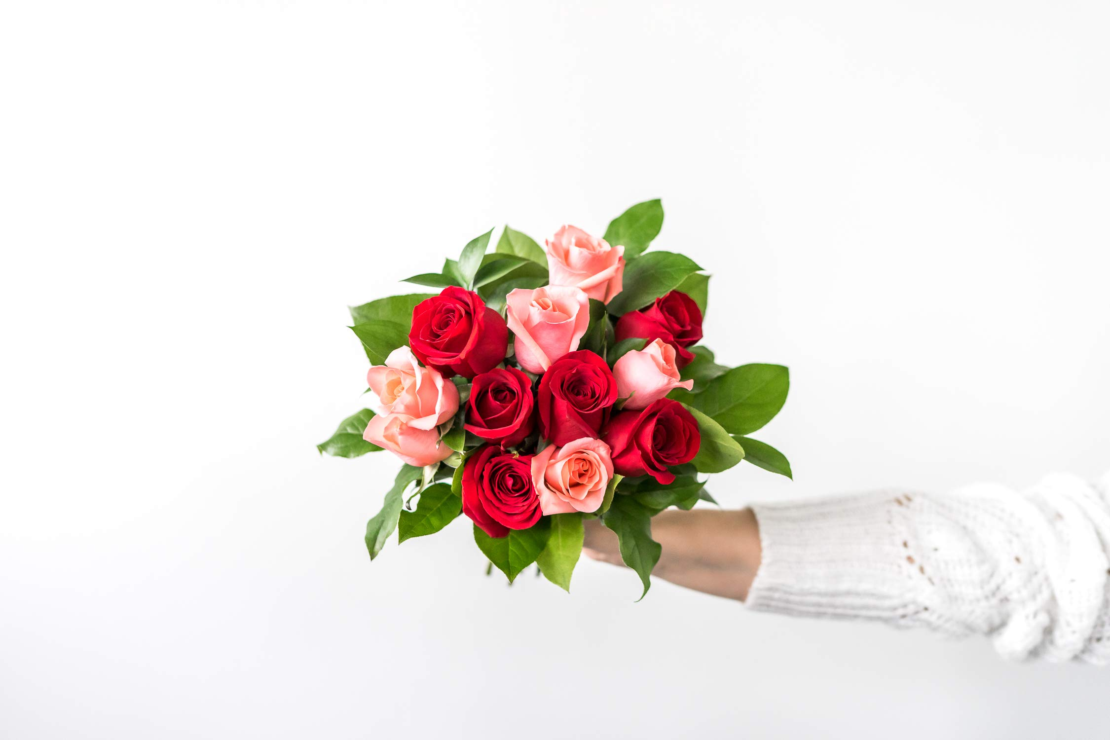 Flowers - One Dozen Red & Pink Roses with Godiva and a Bear (Free Vase Included) by From You Flowers
