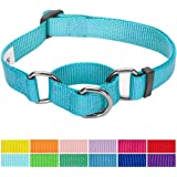 Blueberry Pet Classic Solid Color Safety Training Martingale Dog Collar