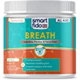 Smartfido Fresh Breath 90 Ct Soft Chews for Dogs – in A Natural Fresh Mint Flavor, for Health Teeth & Gums, Plague & Tarter Control, for All Ages, Made in The USA