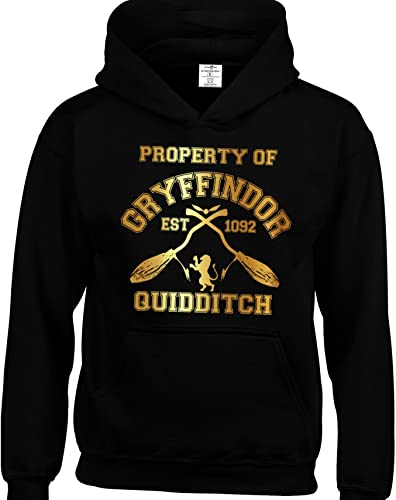 HP Movie Inspired Kids Hoodies