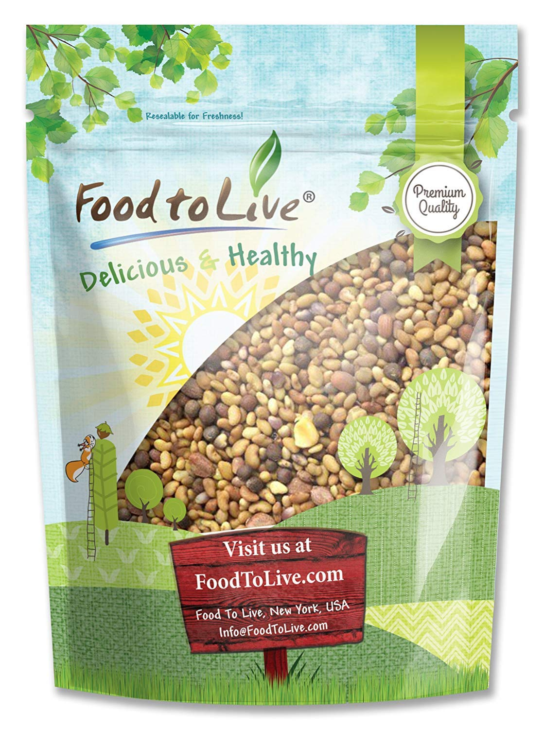 Food to Live Salad Mix of Sprouting Seeds Broccoli, Clover, Radish Alfalfa 8 Ounce