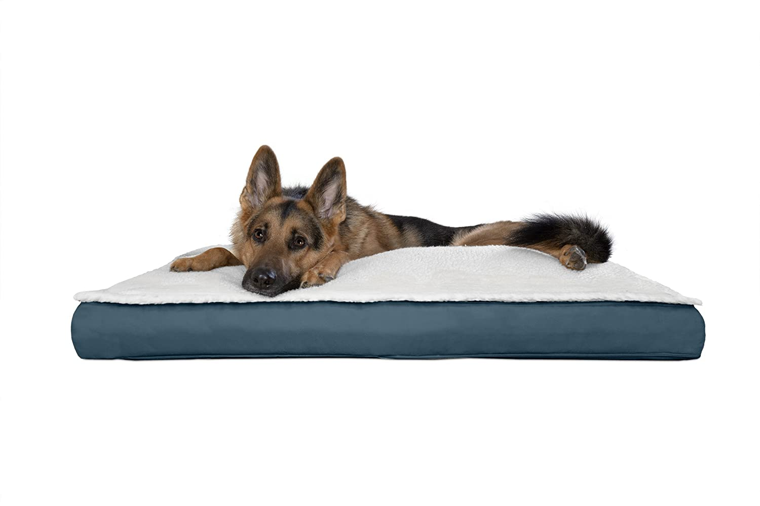 Congreenible Marine bluee JumboFurhaven Pet Dog Bed   Congreenible Sherpa Panel Outdoor Pillow Pet Bed for Dogs & Cats, Espresso, Large