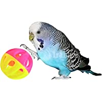 Bird Bell Balls Toy- irabless Bird Toy for Parakeet, Cockatiel, Budgerigar, Parrots, Set of 4, 1.5 Inches (Multicolor)