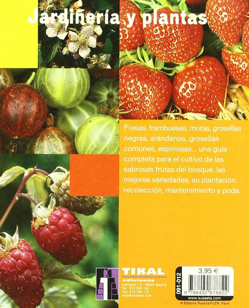 Grosella: variedades, cultivo y mantenimiento