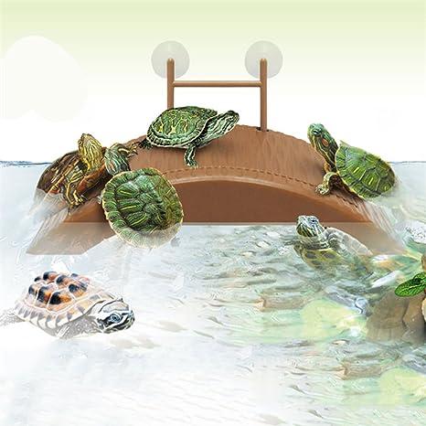VIDOO Acuario Tanque Tortuga Reptil Terraza Isla Plataforma Muelle Casa Muelle Decoraciones