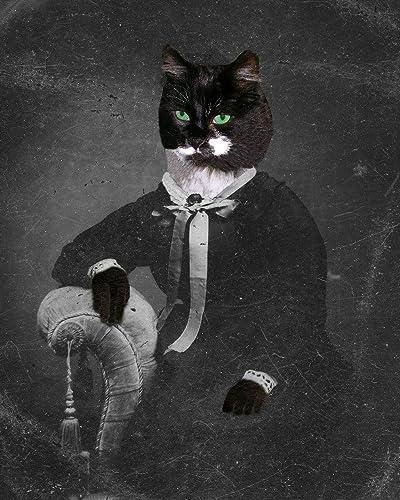 Amazoncom Victorian Black Cat Lady Widow Portrait Kitty Anthro