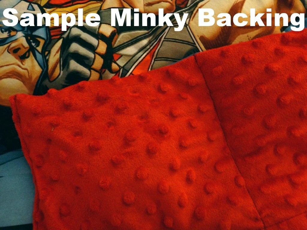 Small Toddler Minky Backing Weighted Blanket by Lifetime Sensory Solutions, Soft Minky Weighted Sensory Blanket for Kids (4 lb for 30 lb child, Organic Airplanes)