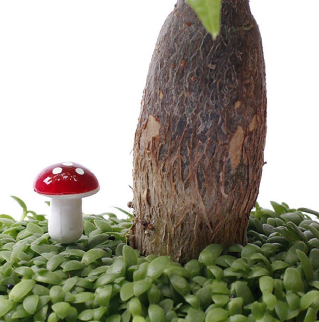 macetas bons/ái 2 x 1.6 cm//0.79 x 0.63 inches Lote de 100 mini setas de espuma para decoraci/ón de jard/ín metal decoraci/ón de paisajes Multicolor Zhichengbosi