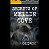 Secrets of Mellin Cove (Mellin Cove Series Book 3)