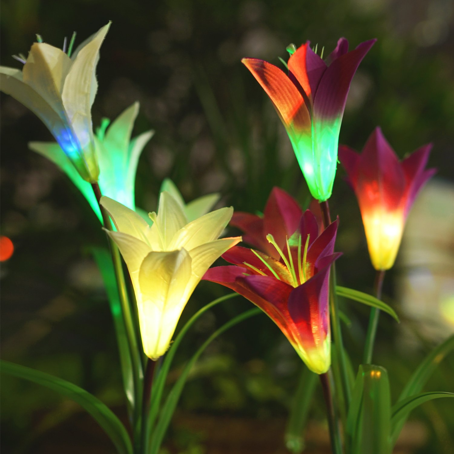 Homestarry Solar Garden Lights Outdoor, 2 Pack Solar Powered Lights with 8 Lily Flower, Multi-Color Changing LED Solar Stake Lights for Garden, Patio, Backyard (Purple/White)