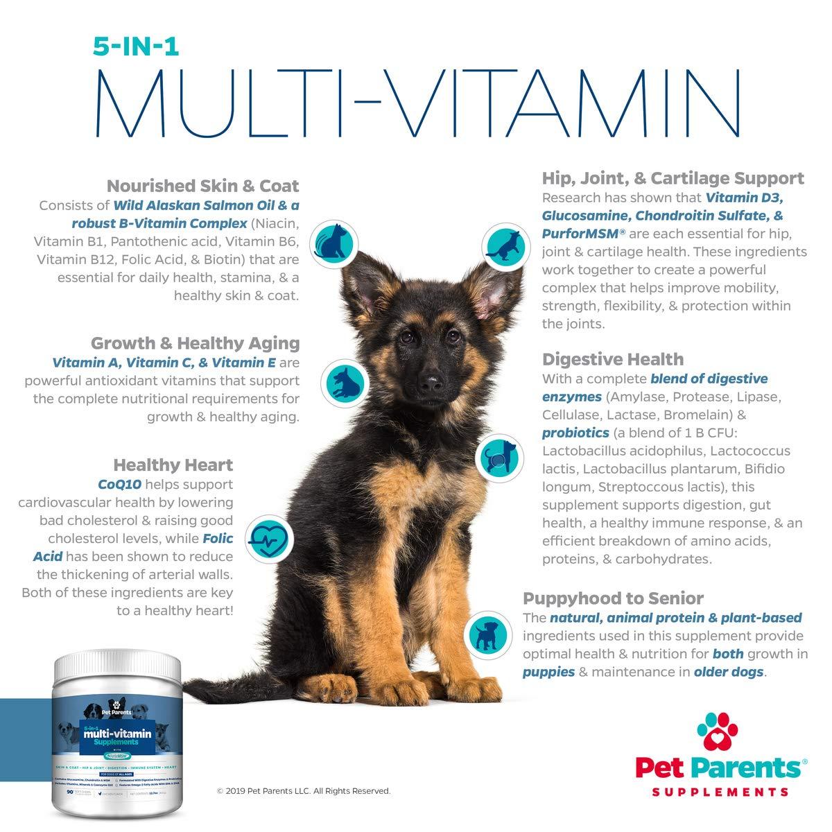 Amazon.com: Pet Parents USA Perro Multivitamina 0.14 oz 90c ...