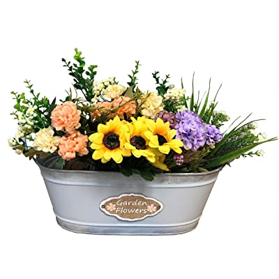 Ashley ZC Vintage Style Metal Planters, Rustic Country Style Iron Flower Pot - Oval Garden Container Succulent Bucket Basket with Handles - Indoor and Outdoor Decor : Garden & Outdoor