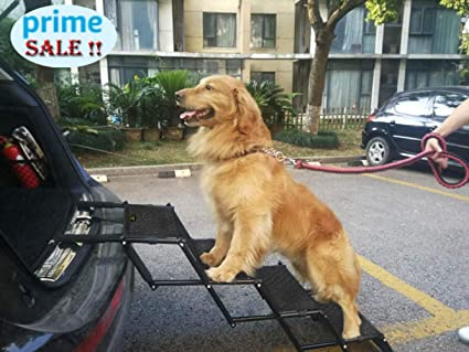 Dog Ramp For Car | Auto Car Update