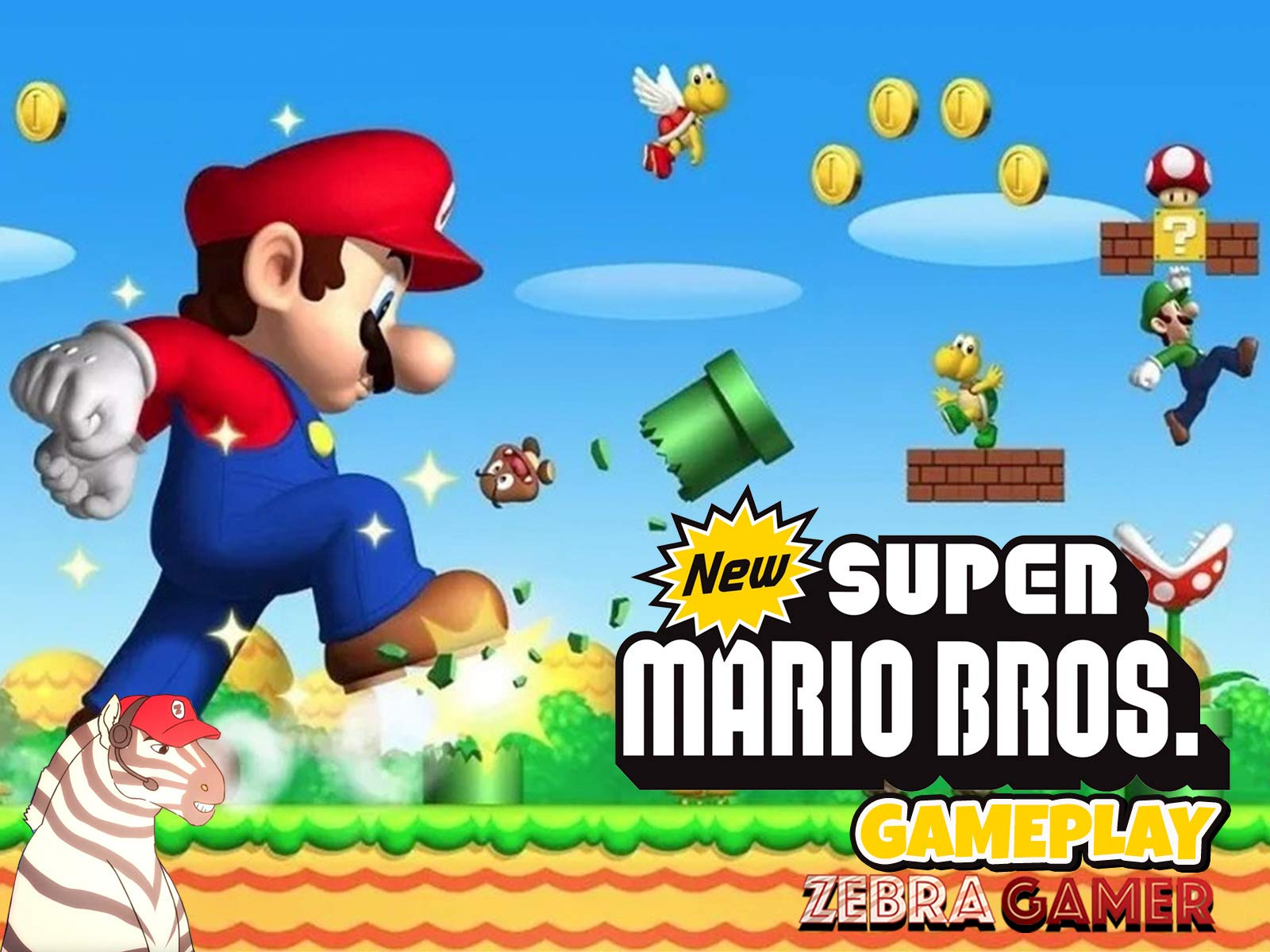 Amazon com: Watch Clip: New Super Mario Bros  DS Gameplay - Zebra
