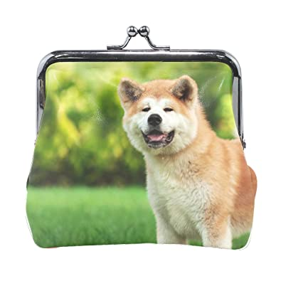 Amazon.com: Mujer Animal Perro Akita blanco amarillo ...