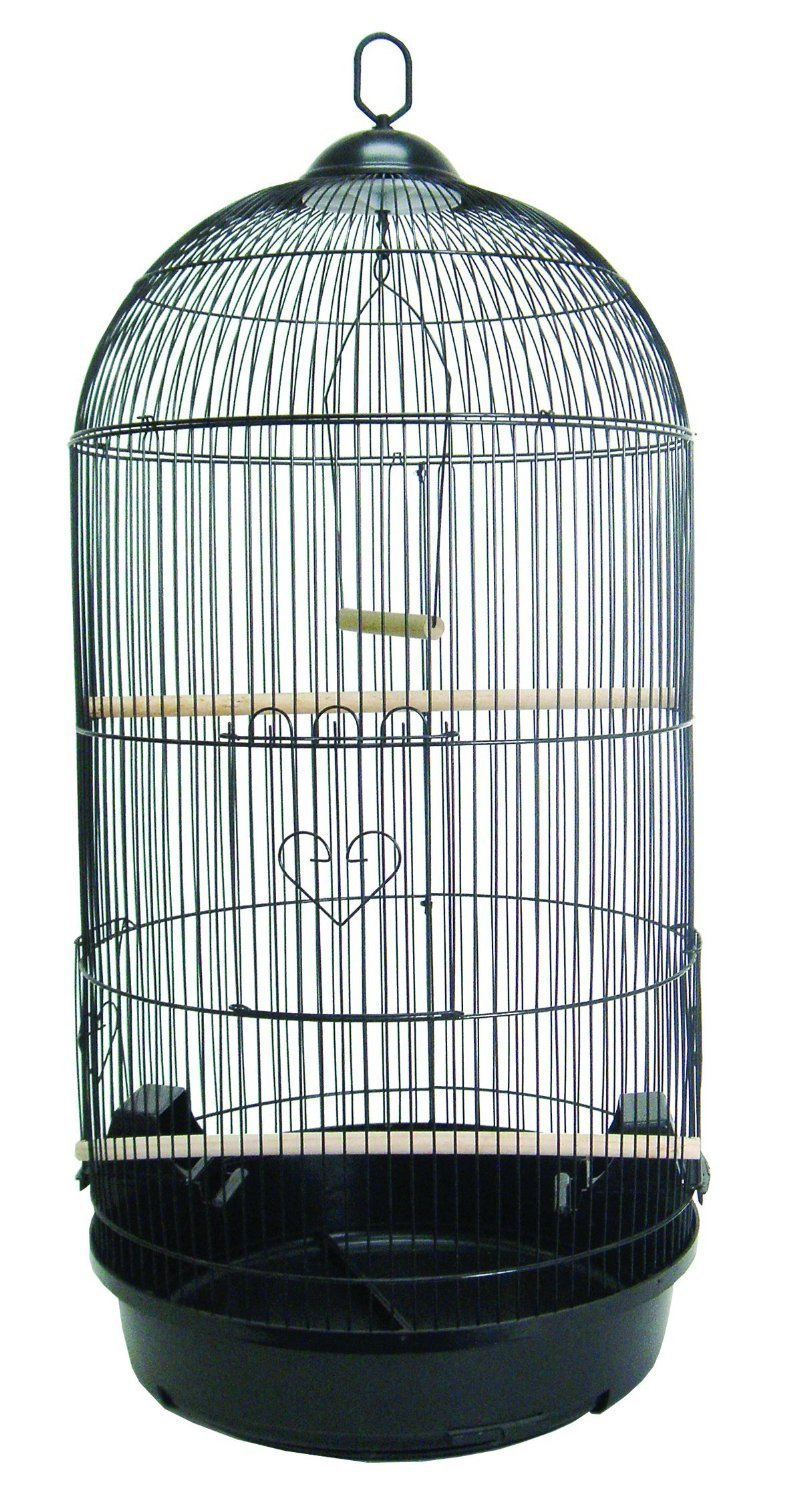 Mcage 36'' Large Tall Round Dome Top Bird Cage For Finch Canary Cockatiel Parakeet Cage (Black)