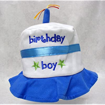 1st Brithday Cake Hat Boy
