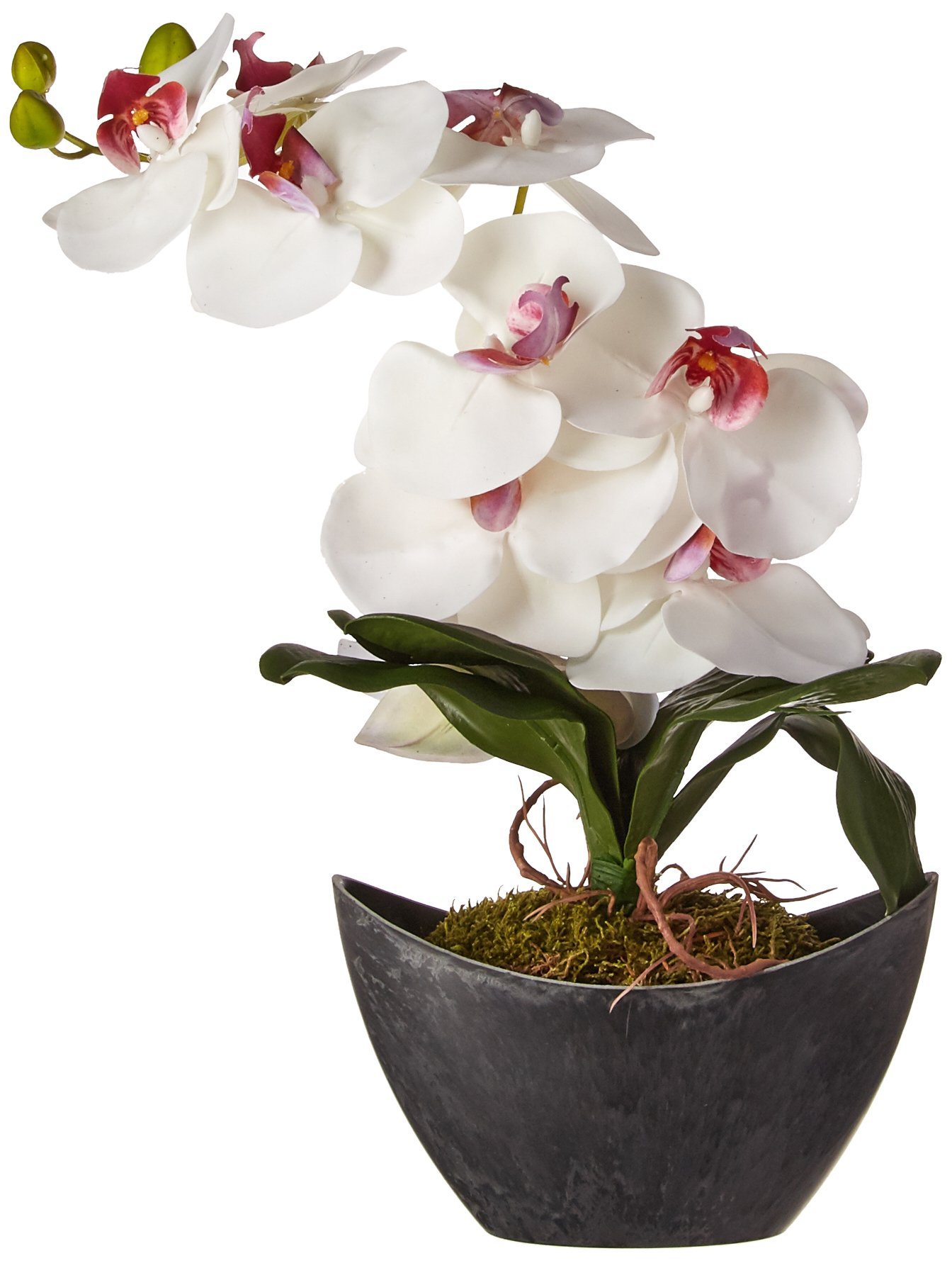 Vickerman F12210 White Orchid Everyday Floral
