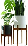 "Fox & Fern Tall Plant Stand Acacia - EXCLUDING 10"" White Ceramic Plant Pot"