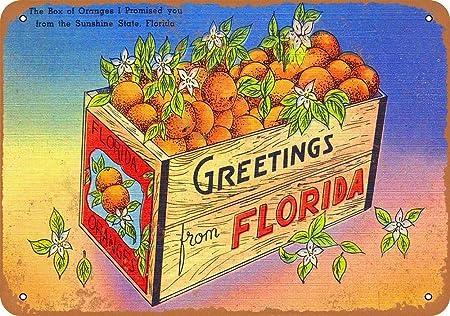 Yohoba Getings from Florida - Letrero de Metal (20,3 x 30,5 cm ...