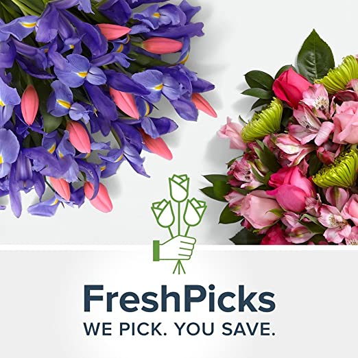 ProFlowers - 1 Count Multi-Colored FreshPicks Bouquet with Vase & Chocolates w/Free Clear Vase - Flowers Mothers Day