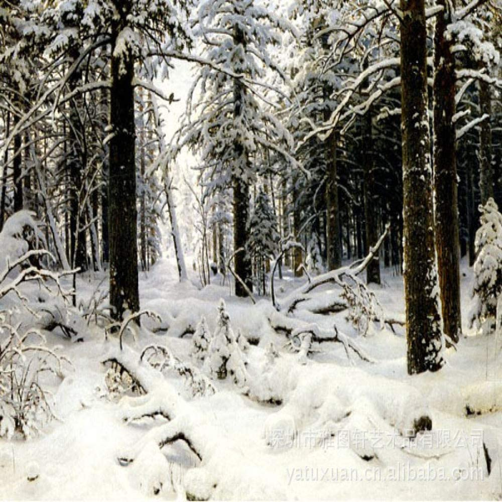 kanhaonio Pintura de Paisaje de Nieve sin Marco Pintura de ...