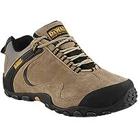 Dewalt Plane Safety Shoes, Brown, 50053-127-43