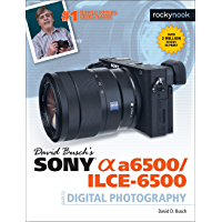 David Busch's Sony Alpha a6500/ILCE-6500 Guide to Digital Photography (The David Busch Camera Guide Series) book cover
