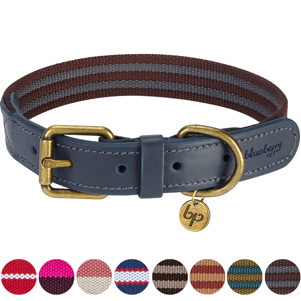 Blueberry Pet 8 Colors Polyester Fabric and Soft Genuine Leather Webbing 3/4'' Wide Dog Collar in Noir Grey and Burgundy, Small, Neck 12''-15'', Adjustable Collars for Dogs