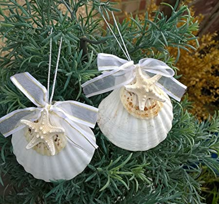 marine arts nautical christmas tree decorations set of 2 seashell starfish scallop shell cream gold ribbon