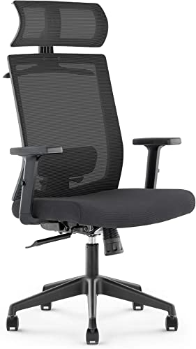DR.PHY Ergonomic Office Chair