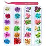 2 Boxes Nail Art Dried Flowers,UNIME 24 Colors Dry Flowers Mini Real Natural Flowers Nail Art Supplies 3D Applique Nail Decoration Sticker for Tips Manicure Decor Accessories,Gypsophila Flowers