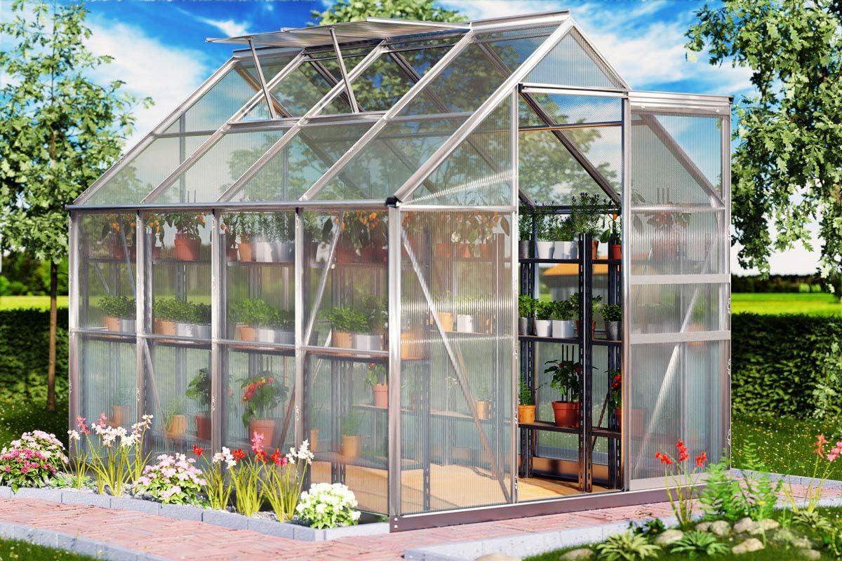 Deuba Gardebruk Invernadero de Aluminio de 7, 63m³ con Ventanas Puerta para el jardín huerto de Frutas y Verduras vivero Exterior: Amazon.es: Jardín