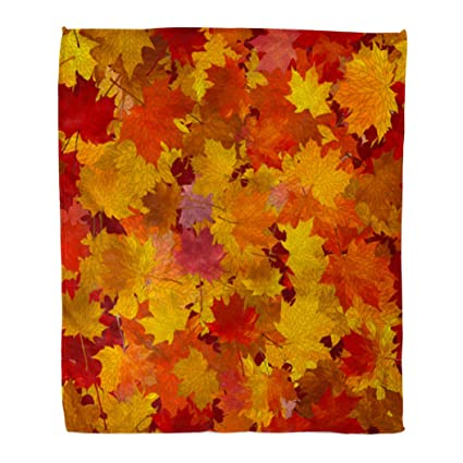 Emvency Throw Blanket Warm Cozy Print Flannel Red Leaf Lot of Maple Autumn  Leaves Ground Yellow 3ef3e4ac3