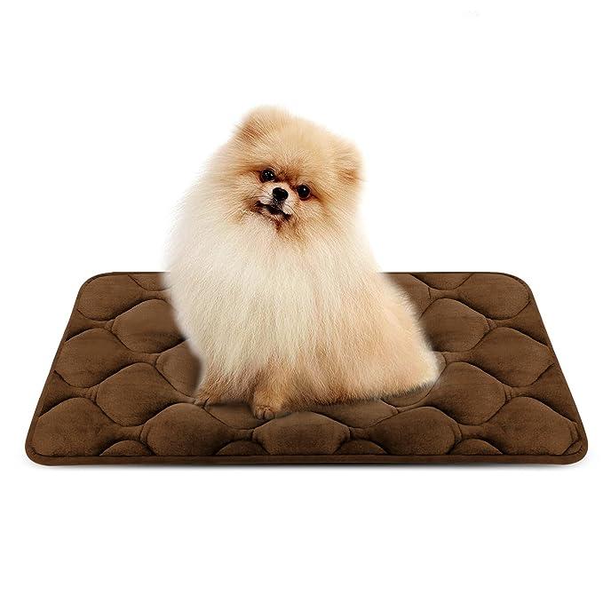 45 opinioni per Hero Dog Letto Cuscino per Cani Piccolo Lavabile- Lusso Morbido Tappeto