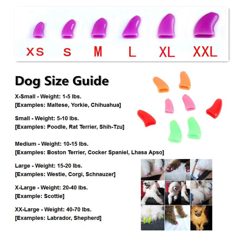 100Pcs Colorful Dog Nail Claw Cap + 5Pcs Adhesive Glue + 5Pcs Applicator Soft Rubber Pet Nail Cover by Jomohoon (Image #5)