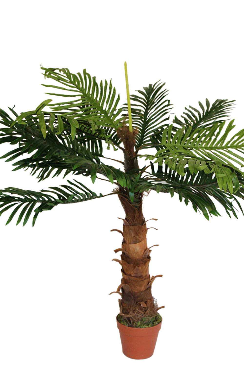 Artificial Plants - Artificial Coco Palm Tree 1m Tall With Pot Olive Grove