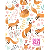 2020 2021 Planner: Pretty Daily, Weekly and Monthly Planner 2 Years - Agenda Schedule Organizer Logbook and Personal…