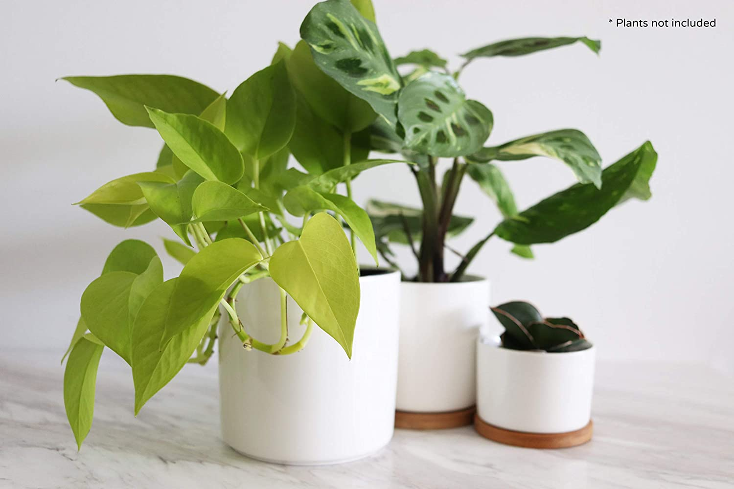 Crazy Plant Guy White Ceramic Indoor Plant Pots. 3 Piece Collection Set. Cylinder Plant Pots with Drainage Hole and Bamboo Saucers