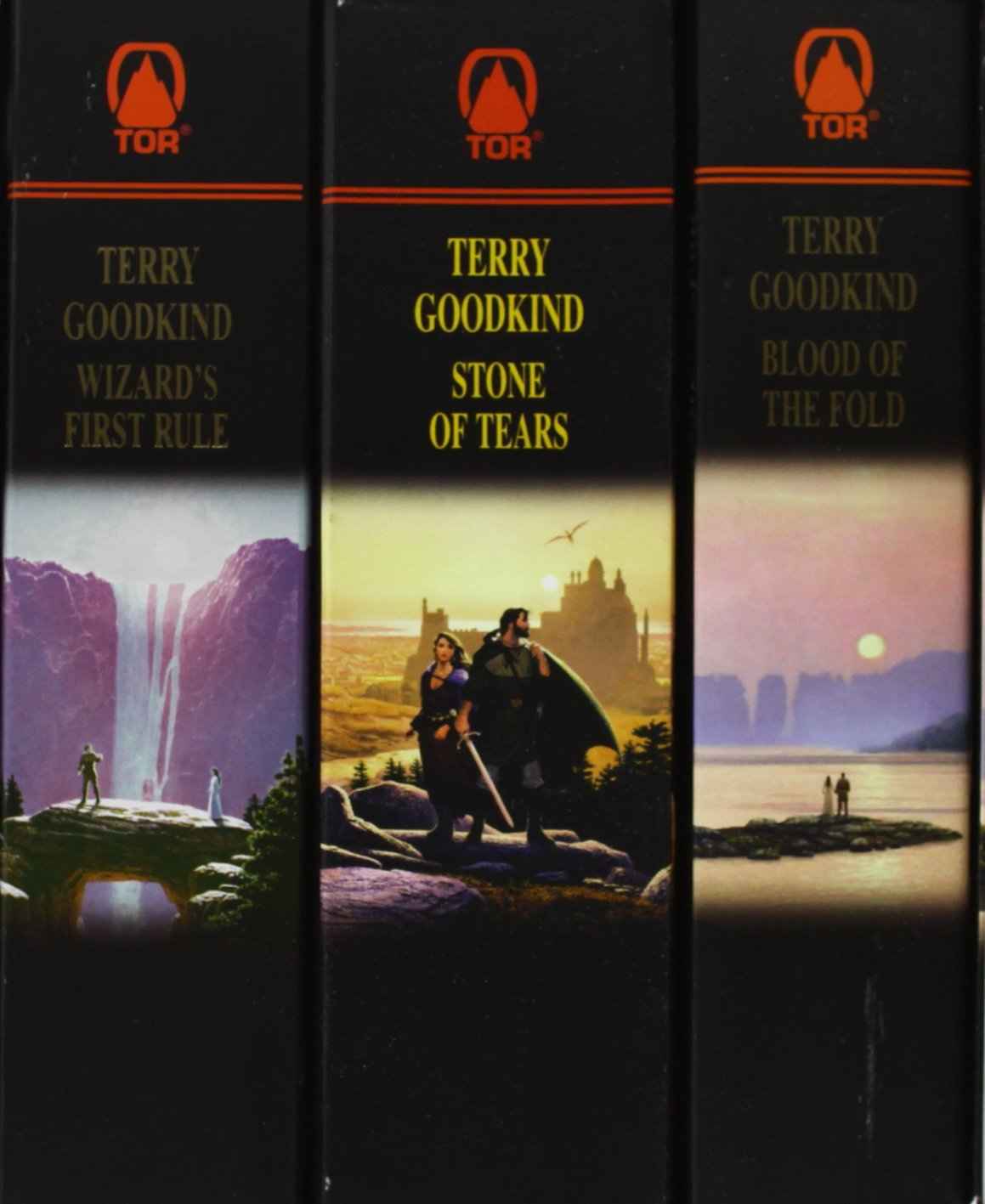 The Sword Of Truth, Boxed Set I, Books 13: Wizard's First Rule, Blood Of  The Fold, Stone Of Tears: Terry Goodkind: 9780812575606: Amazon: Books