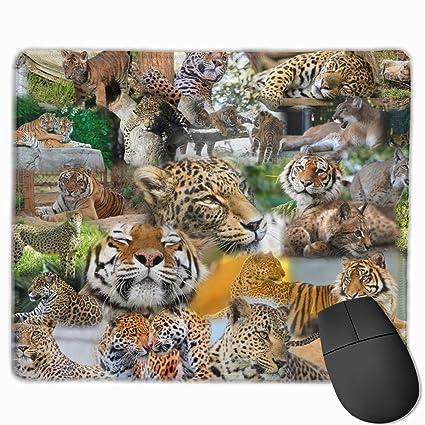 2a3631dba169e Amazon.com: PpLITRV3 Cute, Wildlife, Zoo Animals Mouse Pad Non-Skid ...
