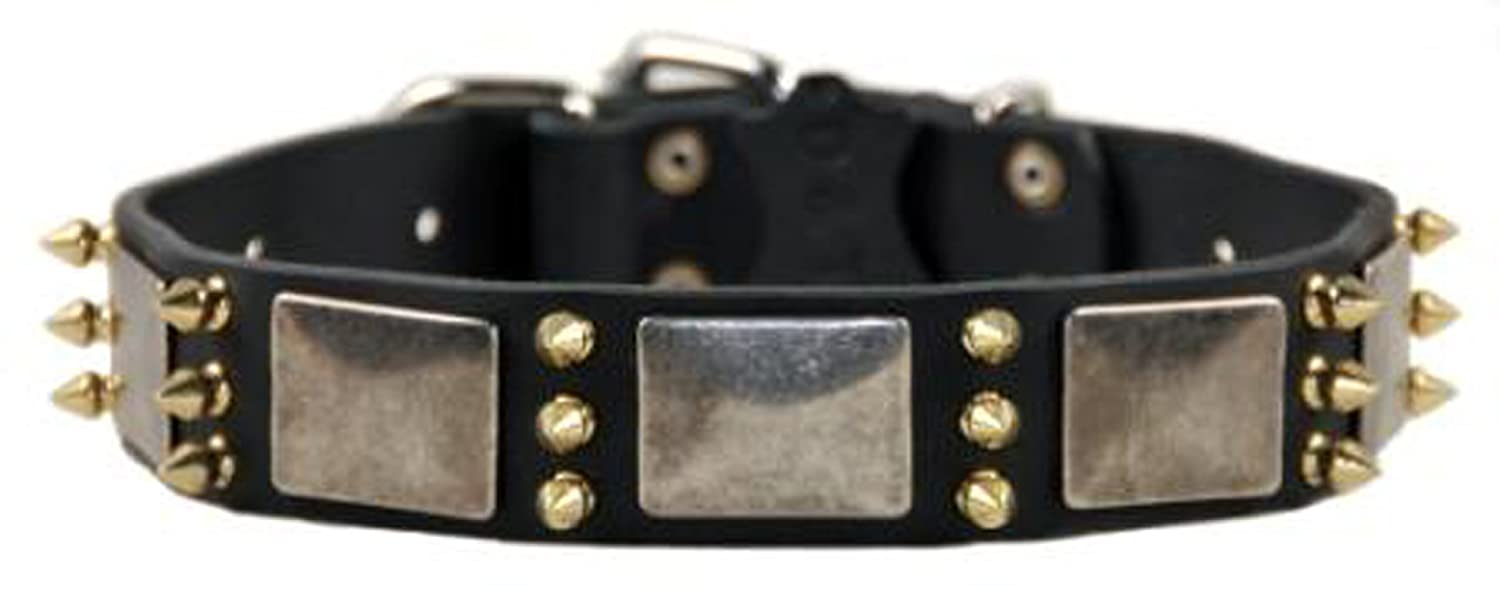 Dean and Tyler DEVILISH DELLA , Dog Collar with Nickel Plates and Brass Spikes  Black  Size 18Inch by 11 2Inch  Fits Neck 16Inch to 20Inch