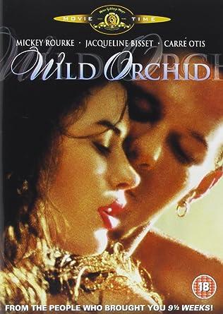 Carre otis wild orchid