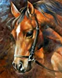 5D Diamond Painting Kit Full Drill DIY Rhinestone Embroidery Cross Stitch Arts Craft for Home Wall Decor Brown Horse 12x16inch