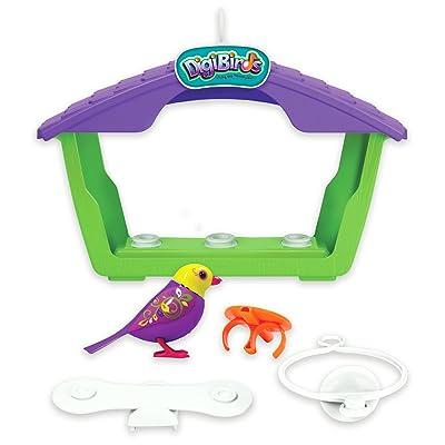 DigiBirds - Birds with Bird House: Toys & Games