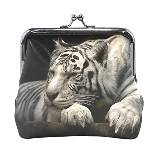 Amazon.com: vipsk mamá Ideas de regalo gatear tigre cartera ...