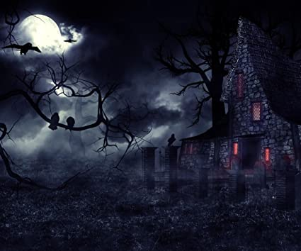 Amazon.com  10×8 ft Dark Mysterious Halloween Landscape